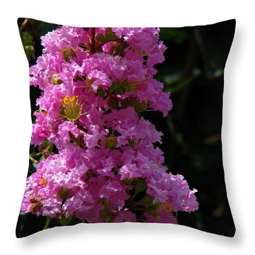 Crape Myrtle Throw Pillow by Greg Patzer
