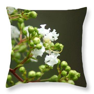 Crape Myrtle Throw Pillow