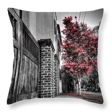 Crape Myrtles In Historic Downtown Charleston 2 Throw Pillow