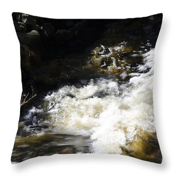 Crashing Water Throw Pillow