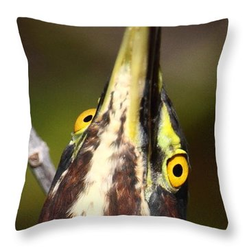Crazy Eyes Throw Pillow by Bruce J Robinson