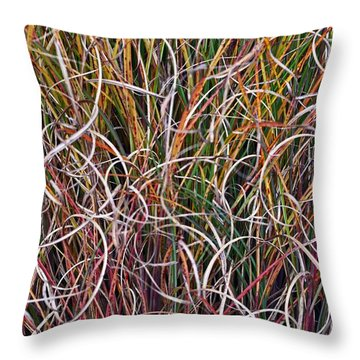 Crazy Grasses Throw Pillow by Judy Wolinsky