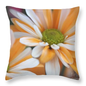 Throw Pillow featuring the photograph Creamsicle Daisies by Mary Lou Chmura