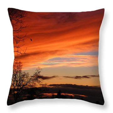 Creamsicle Throw Pillow by Tom Mansfield