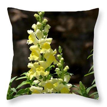 Creamy Yellow Snapdragon Throw Pillow by Maria Urso