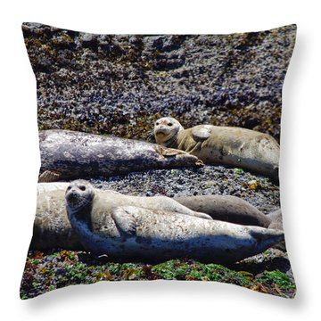 Creatures Comfortable Throw Pillow by Adria Trail