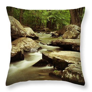 Creek At St. Peters Throw Pillow