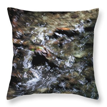 Creek Bed Throw Pillow by William Norton
