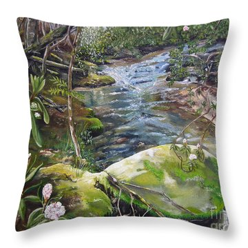 Creek -  Beyond The Rock - Mountaintown Creek  Throw Pillow