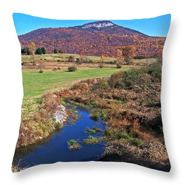 Creek In The Valley Throw Pillow
