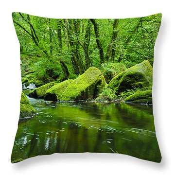 Creek In The Woods Throw Pillow by Chevy Fleet