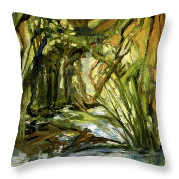Creek Levels With Overhang Throw Pillow
