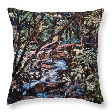 Creek Near Smart View Throw Pillow by Kendall Kessler