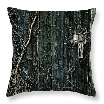 Creeper Throw Pillow by Andrew Paranavitana