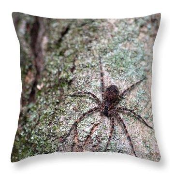 Creepy Spider Throw Pillow by Karol Livote