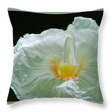 Crepe Ginger Throw Pillow by Jocelyn Kahawai
