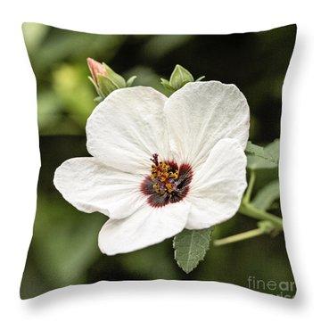 Crimson-eyed Mallow Throw Pillow by Scott Pellegrin