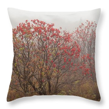 Crimson Fog Throw Pillow