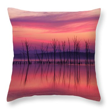 Crimson Morn Throw Pillow