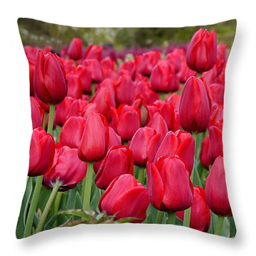 Crimson Tulips  Throw Pillow