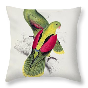 Crimson Winged Parakeet Throw Pillow