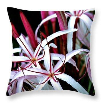 Crinum Asiaticum Spider Lily Hawaii Throw Pillow by Karon Melillo DeVega