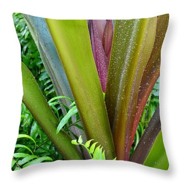 Throw Pillow featuring the photograph Crinum Lily And Ferns by Darla Wood