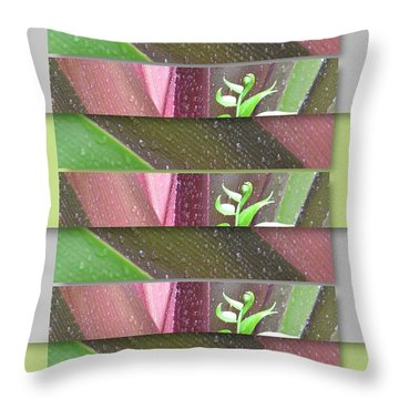 Throw Pillow featuring the photograph Crinum Lily Collage3 by Darla Wood