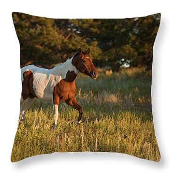 Crispy Throw Pillow
