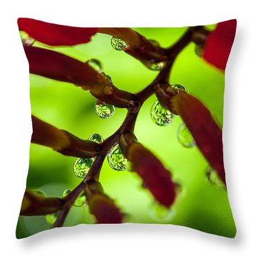 Crocosmia Reflection Throw Pillow