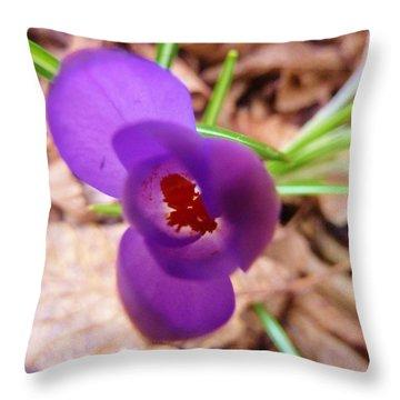 Crocus Throw Pillow by Ann Michelle Swadener