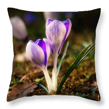 Throw Pillow featuring the photograph Crocus by Christine Sponchia