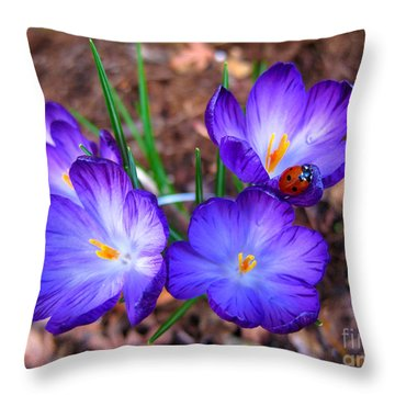 Crocus Flowers And Ladybug Throw Pillow by Debra Thompson