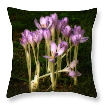 Throw Pillow featuring the photograph Crocus by Inge Riis McDonald