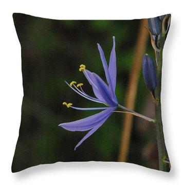 Crocus Sativus Throw Pillow