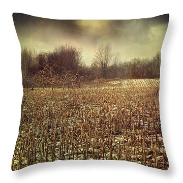 Crop Field In Early Winter After First Snow Throw Pillow by Sandra Cunningham