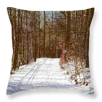 Throw Pillow featuring the photograph Cross Country Trail by Nina Silver