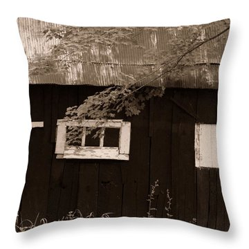 Cross Talk Throw Pillow