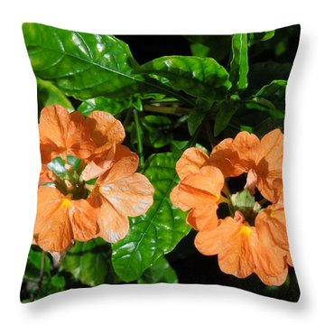 Throw Pillow featuring the photograph Crossandra by Ron Davidson