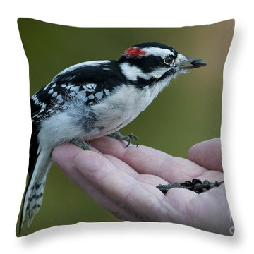 Crossing Borders.. Throw Pillow by Nina Stavlund