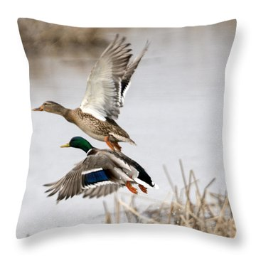 Crowded Flight Pattern Throw Pillow