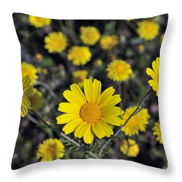 Throw Pillow featuring the photograph Crown Daisies by George Atsametakis