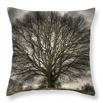 Crown Jewel Throw Pillow by Elisabeth Van Eyken