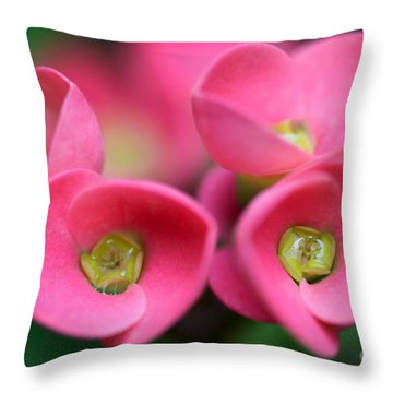 Throw Pillow featuring the photograph Crown Of Thorns Photo by Meg Rousher