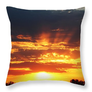Christine Johnson Throw Pillows