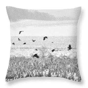 Crows In Cornfield Winter Throw Pillow by Dan Friend