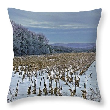 Throw Pillow featuring the photograph Crows In The Corn by Christian Mattison