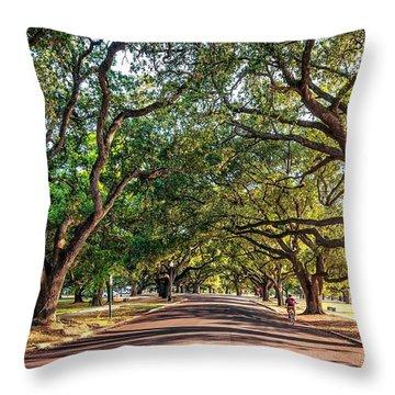 Cruising In City Park Throw Pillow by Steve Harrington