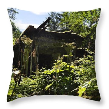 Throw Pillow featuring the photograph Crumbling Down by Cathy Mahnke