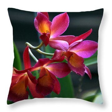 Throw Pillow featuring the photograph Ctna New River Orchid by Greg Allore